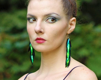 Green Beetle Wing Statement Earrings  Long Iridescent Unique Natural Insect Jewelry Festival Gear Boho Chic Bridal Trends Girlfriend Gift