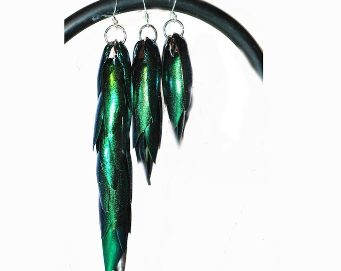 Green Beetle Wing Earrings Medium Length Best friend or Girlfriend Gift for Her Statement Jewelry Insect Nature Natural Theme