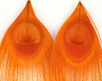 Orange Peacock Feather Earrings Holiday Festive Fall Halloween Gift Idea for Her Mom Costume