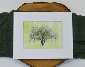 Hunter Oak - Live Oak Tree Drawing - Handpainted Watercolor Print - Handmade Gift - Nature Art Wall - Tree Art - Pen and Ink Drawing