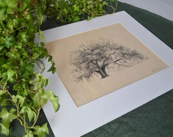 Ophelia Oak - Fine Art Print on Wood - Pen and Ink Drawing - tree art - nature lover gift - make your own collection - new house gift