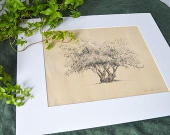 Lover's Oak - Live Oak Tree Print - Pen and Ink Drawing - Maple Veneer - Matted Signed Print - Nature Art Wall - Make Your Own Collection