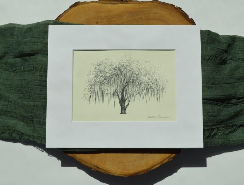 Botanical Illustration Oak Tree Print - Line Drawing - Nature Inspired Art  - Tree Drawings - Savannah Georgia Gift - Southern Decor
