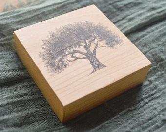 Olive Tree Pen and Ink Fine Art Print on Wood - Sustainably Harvested - Tree Art Collection - Arbor Art - Mini Art Wall - Wood Ornament