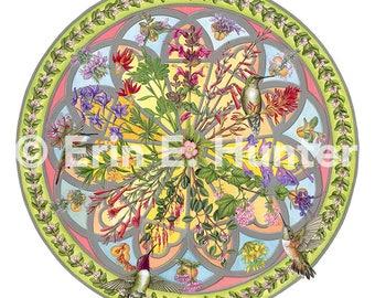 Floral Compass fine art giclée print