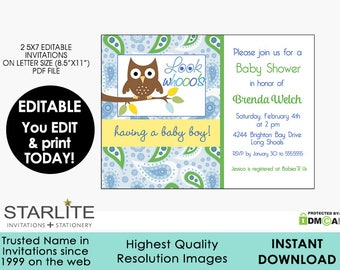 Owl baby shower invitation etsy baby boy owl baby shower invitation filmwisefo