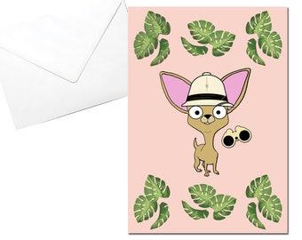 Chihuahua Card, Explorer