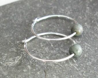 Fossil Hoop Earrings, Real Dinosaur Coprolite Jewelry, Paleontologist Gift, Sterling Silver