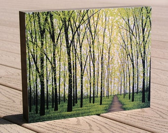 """Landscape Forest 8 x 10 art print mounted to a deep birch panel, ready to hang.... """"Silent Forest"""" by Amy Giacomelli, Christmas gift"""