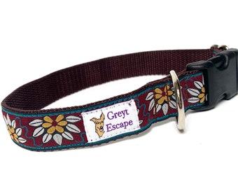 Floral dog collar with buckle, teal buckle collar, brown dog collar, burgundy dog collar, spanish flower, La Flor