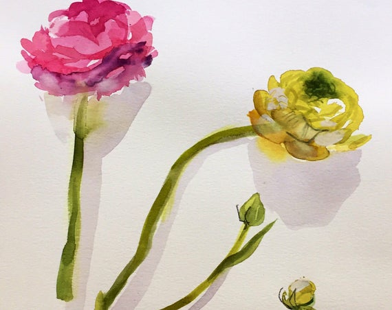 Watercolor painting -Ranunculus Flower Study- original floral watercolor