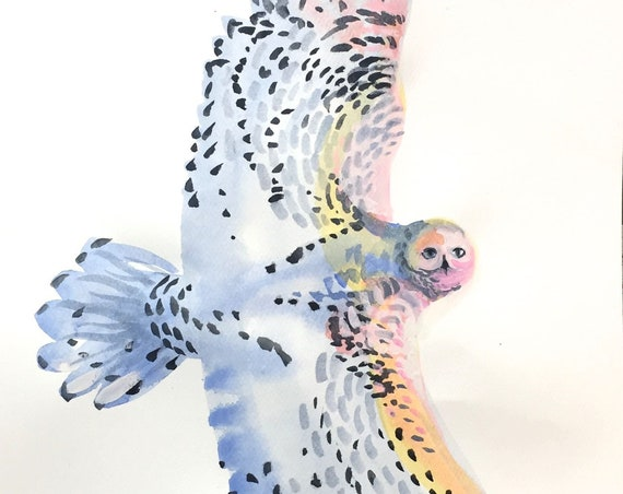 Original Watercolor painting of Snow Owl