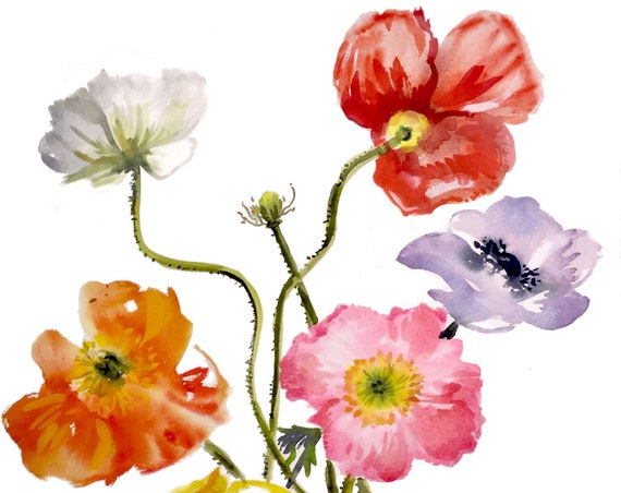 Original floral watercolor painting -Bright Poppies