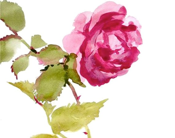 Giclee print of Shocking Pink Rose from original watercolor painting