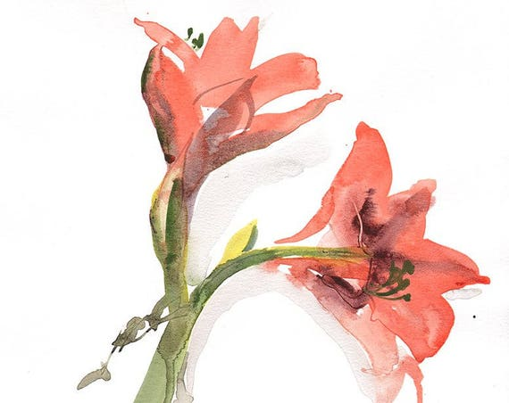 Watercolor flower painting-Orange Amaryis- original by Gretchen Kelly