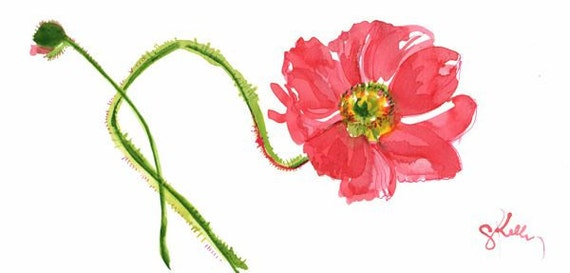 Original watercolor flower painting -Curtsy Poppy