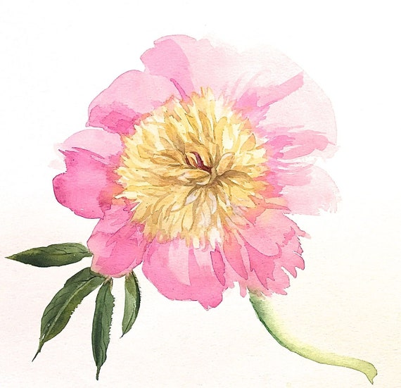 Original floral watercolor painting -Light Pink Peony