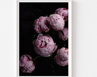 Still Life Photography - Bouquet Deep Pink Peony Flowers Dark Dramatic Black Deep Color Romantic Feminine Art Photo Print