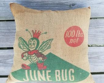 Rustic Junebug Burlap Pillow
