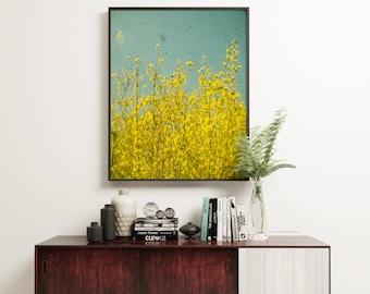 Yellow Flower Art, Nature Photography, Forsythia Print, Bedroom Art, Floral - Summer