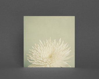 Flower Greeting Card, Floral Card - Pale Beauty