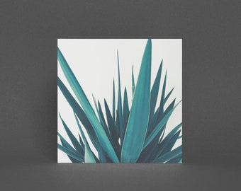 Plant Greeting Card - Yucca Leaves