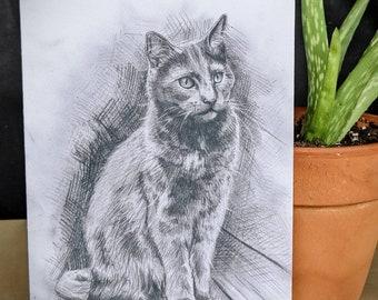 """Hazel Cat Fine Art Card - 5x7"""" - Blank Inside"""