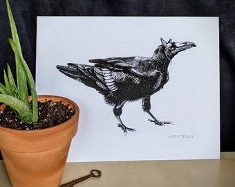 """Party Raven Print 8 x 10"""""""
