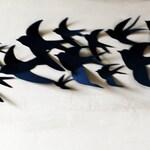 75 3D Bird Wall Art