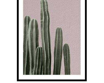 Cactus Print, Cactus Photography, Plant Prints, Botanical Print, Plant Photography Print, Cacti Print, Prickly Pear Print, Plants on Pink