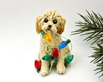Non AKC Dog Breeds