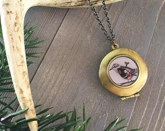 Caging the Forest Bird Locket - bird necklace, sparrow pendant, wind-up bird art necklace