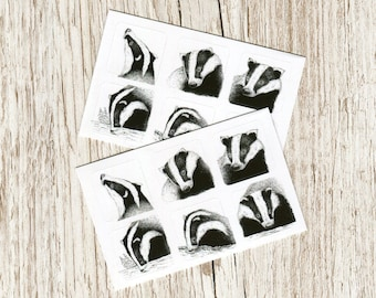Sticker set - Black & White Badgers - British wildlife on 1 inch (2.5cm) vinyl squares, ideal for journaling, decorating surfaces and craft
