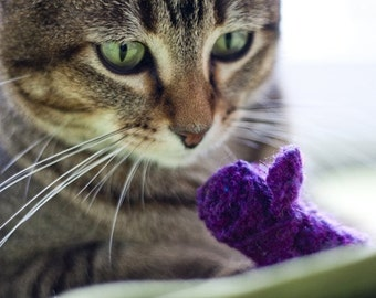 eco friendly cat toys, set of 3 wool sweater mice, catnip filled,  assorted colors,