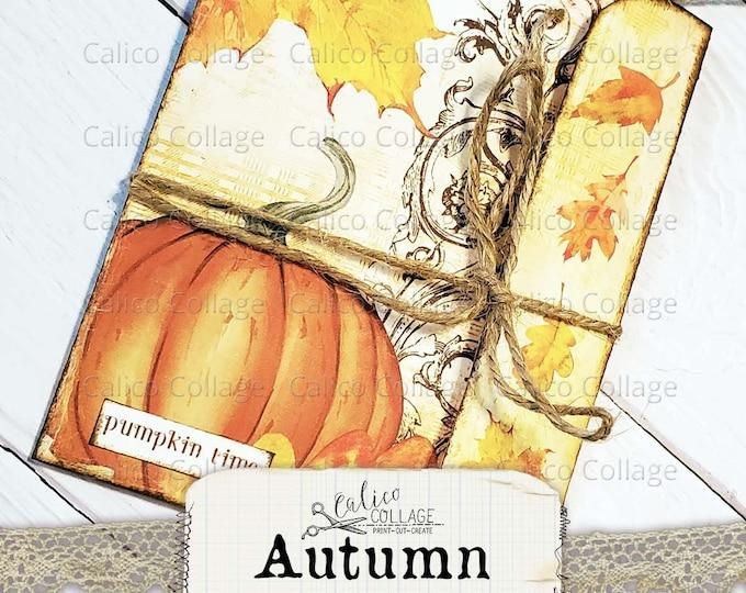 Autumn Ephemera