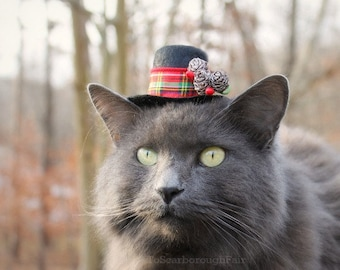 Hats For Cats The Original By Toscarboroughfair On Etsy