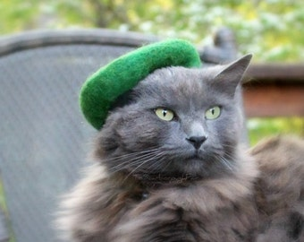 Cat Green Beret - Scottish Beret for cats - Pet Costume  - Girl Scouts of America  - Green Beret - St Patrick's Day