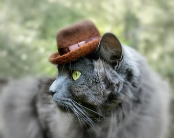 Fedora Cat Hat - Fathers's Day Hat - Indiana Jones Pet Hat - Hand Felted Wool Hat - Hipster Hat for Pets - Watchmen