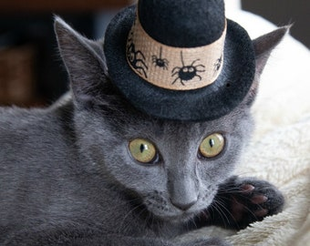 Pet Halloween Hat - Scary Spiders Cat Hat - Halloween Dog Hat - Virtual gatherings costume