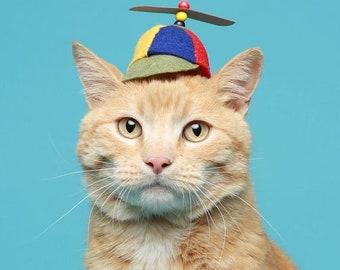 Original Design-Cat Hat-Propeller Hat-Pet Costume -SF Fandom - Comics Beany Boy - Propellerhead - Cat Halloween Costume - Cat Dog Photo Prop