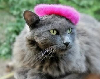 Raspberry Beret - Cat Beret - Pink Flambe Wool Felted Beret - French Cat Beret