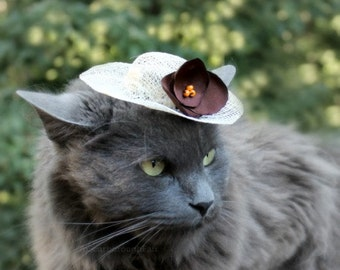 Cat Hat - Autumn Hat for Cat - French Roast - Sinamay Pet Hat - Cat Bonnet - Small Sun Hat - Animal Photo Prop - Cat Costume