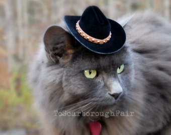 Walker, Texas Ranger Cowboy Cat Hat - Father's Day Hat - The Brick Cowboy Cat Ferret, Guinea Pig Small Dog Hat with Studded Suede Band
