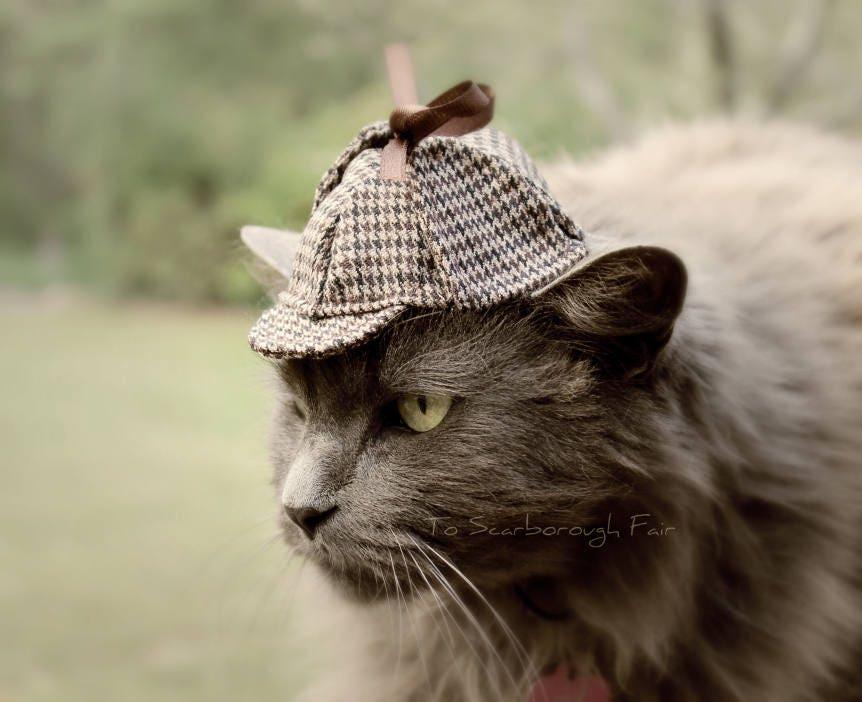 Sherlock Holmes Cat Hat Deerstalker Cat Hat   Etsy