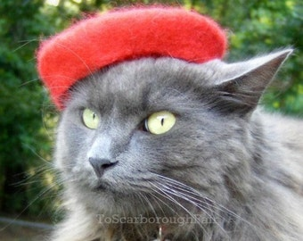 Mini Beret - French Chic Pet Beret Hand Felted out of Wool - Ruby Red - Fiesta