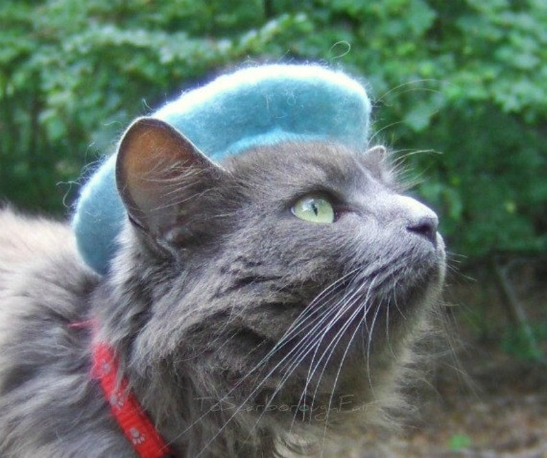 3b25ddd467f2 Cat French Beret - Bridesmaids Movie Original Beret - Wool Beret for Cats  and Dogs - Hand Felted Beret for Pets-Birthday Gift - Holiday Gift