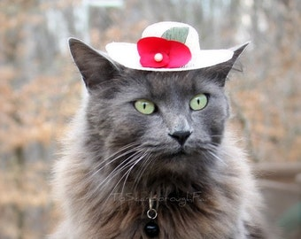 Easter Bonnet -Cat Bonnet - Gifts for Moms - Mothers' Day Gift - Pet Bonnet