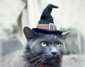 Halloween Costume for Cat -  Cat Costume - Cat Witch Hat - Hissy Witch -Pet Halloween Costume - Cat Photo Prop - OOAK cat hat