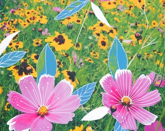 Cosmos Art Print | Mixed Media Painting | Floral Photograph | Katie Daisy | 8x10 | 11x14