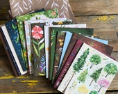 Notecards | With Love, Adventure, and Wildflowers | Katie Daisy